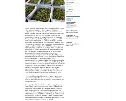 Επιτραπέζια ελιά  ένας «εθνικός θησαυρός»   Ελλάδα   Η ΚΑΘΗΜΕΡΙΝΗ